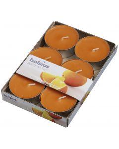 Bolsius, Bolsius Maxi Light X 6 Orange